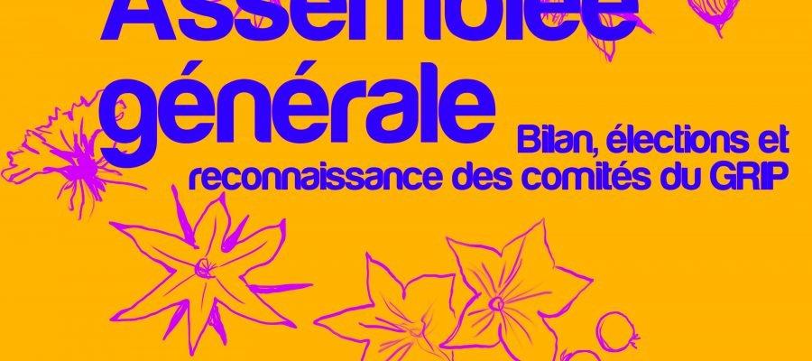 """Bannière d'Assemblée générale. Il est écrit à droite """"Bilan, élections et reconnaissance des comités du GRIP"""". L'arrière-plan est orange avec des dessins roses de fleurs, les écritures sont bleues royal."""