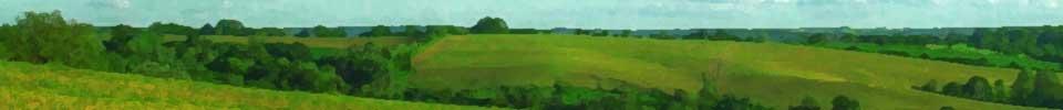 Bannière faite sur le long à l'horizontale présentant des collines. L'ensemble est très vert, il y a quelques arbres (qui sont plus foncés), mais le tout est surtout composé de prés. Au-dessus de la ligne d'horizon, il y a une mince ligne de ciel bleu pâle sans nuage.