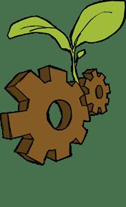 Dessin de deux écrous bruns dont sort, au centre, une plante naissante, verte, à deux grandes feuilles et une petite.