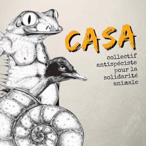 """Icône de CASA de forme carrée. À gauche, on retrouve un dessin en noir et blanc. Au premier plan se trouve une coquille d'escargot de laquelle sort la tête d'un canard. Au deuxième plan se trouve un corps humain à la tête de grenouille. À droit, il est écrit CASA en jaune-orange avec une écriture rappelant un pinceau. Juste en dessous est écrit """"collectif antispéciste pour la solidarité animale"""" en noir et dans une calligraphie rappelant les dactylos. L'arrière-plan est gris, dans un léger dégradé de gauche à droite de pâle à foncé."""