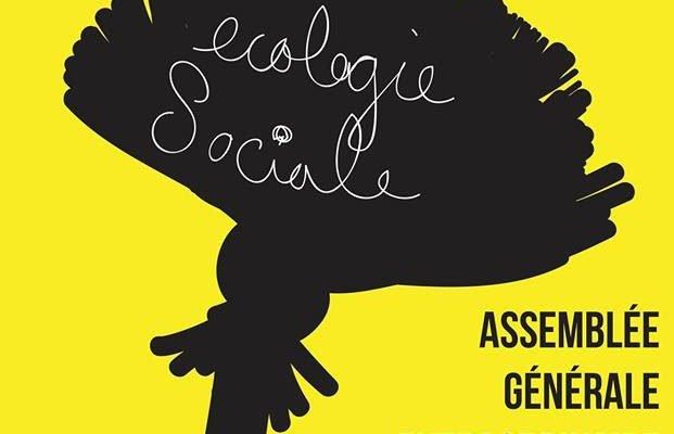 Affiche de l'assemblée générale extraordinaire du 22 novembre 2017. Une silhouette d'une fleur de pissenlit en noir, avec écologie sociale écrit en lettres attachées en blanc à l'intérieur, sur fond jaune.